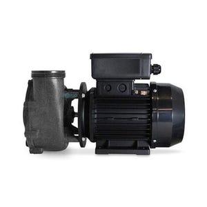 "FMXP2E Jet Pump 2HP, 230V, 2"" MBT, 48-frame"