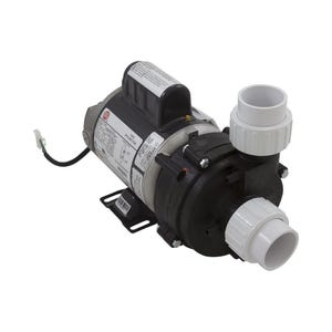 "Baptismal Pump 115 V, 0.05 HP, 1-1/2"" inlet and outlet"
