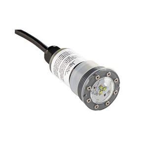 LED module RGBW White, Nicheless LED, 12V, 9W, w/150' Cable